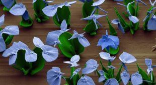 Mikroskopijne kwiaty wyhodowane przez naukowców (Harvard University / Wim L. Noorduin)